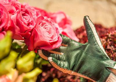 Gants modèle Classique Milano pour femme, cuir Agneau et crochet couleur Vert Anglais.