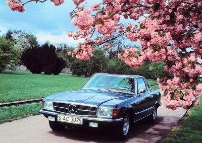 1971-1989 1980 Mercedes-Benz 350 SL R 107 continue la lignée des roadsters lancée avec la 300 SL en 1957.